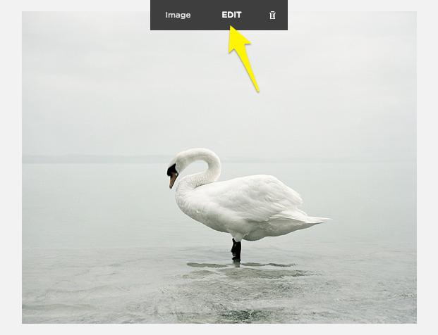edit-image-block.png