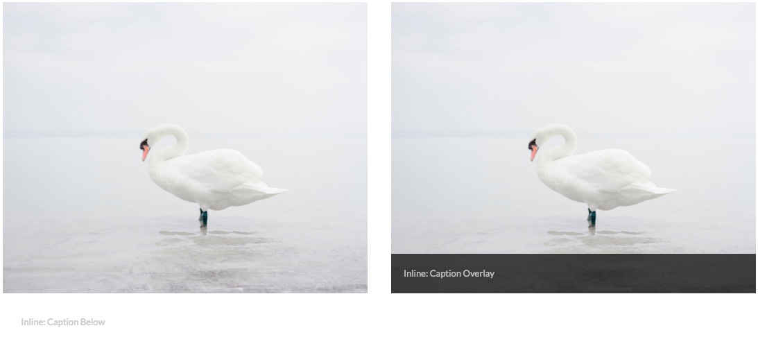 Examples of Inline Image Blocks, one with a caption below and one with a caption overlay.