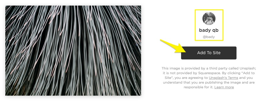 Searching and adding stock images – Squarespace Help