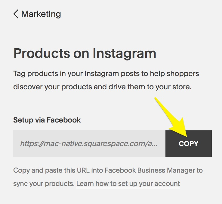 f61938e391f80 Tagging products on Instagram – Squarespace Help
