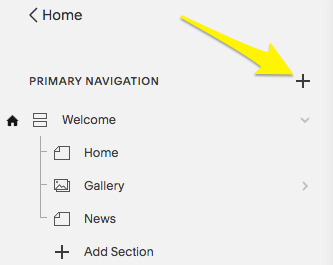 Click the plus icon in the Pages panel to add a new page.