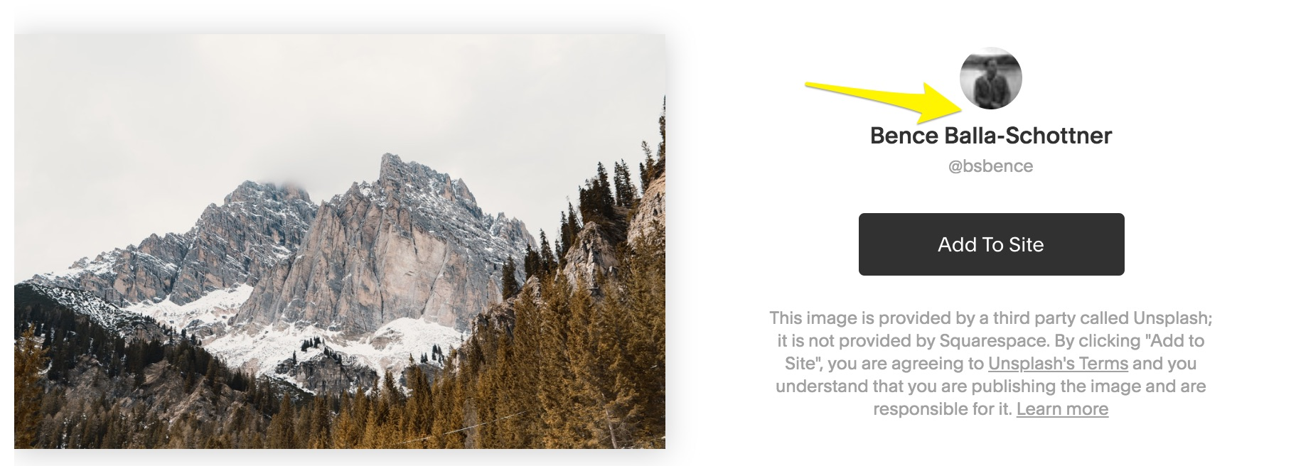 unsplash click artist name