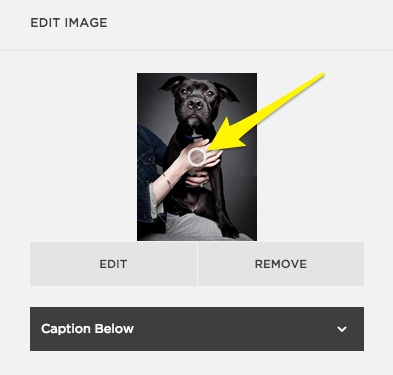 Using focal points to center images – Squarespace Help