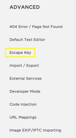 Squarespace Help - Disabling Escape key login